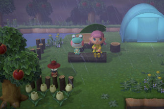 In Animal Crossing, you get to develop your own island while also interacting with other players doing the same.